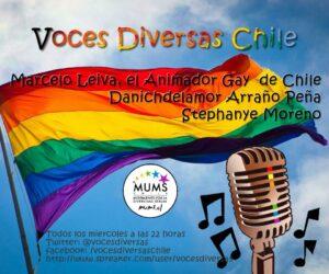 voces_diversas_chile_bandera